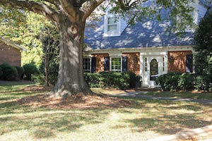 fountain_manor_tree_in_front_yard_300